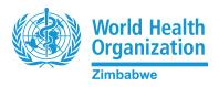 Zimbabwe Idai Recovery Project